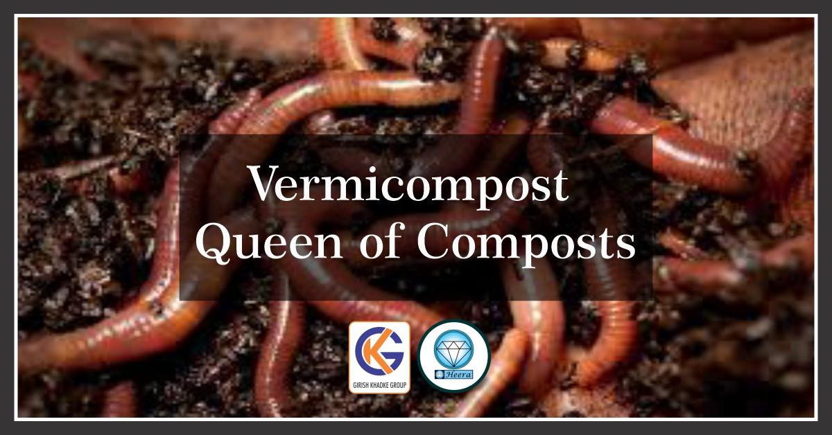 Vermicompost – Queen of Composts