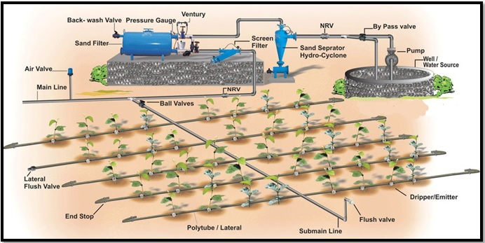 Components of drip irrigation system